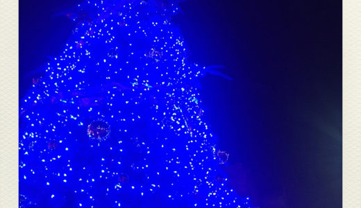 Merry Christmas 2019 12.24